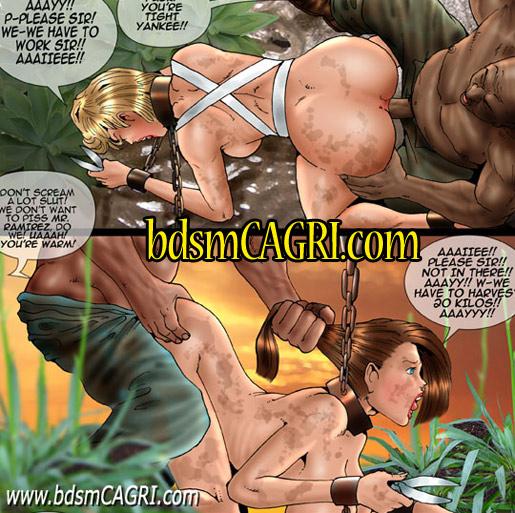 bdsm-comics-d